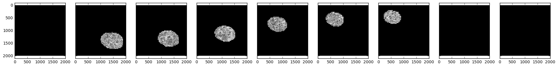 Sample electron microscopy images over time